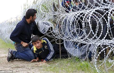 Người nhập cư ồ ạt sang Tây Âu  - ảnh 1