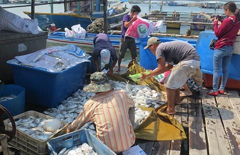 Người dân đổ cá trước cổng nhà máy chế biến hải sản phản đối ô nhiễm - ảnh 1