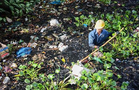 Hành động vì môi trường nông thôn bền vững - ảnh 1