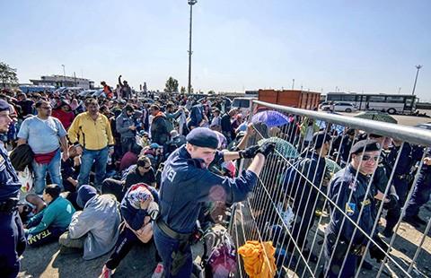 EU bắt tàu đưa người vượt biên  - ảnh 1