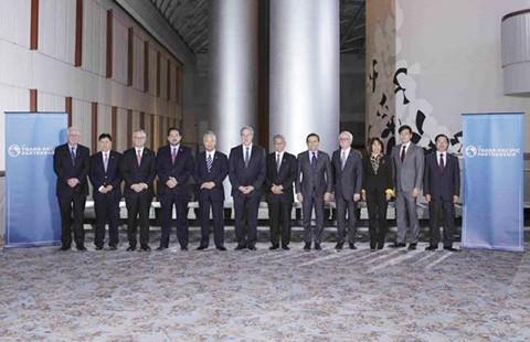 TPP hoàn tất, Việt Nam sẽ thu lợi đáng kể - ảnh 1