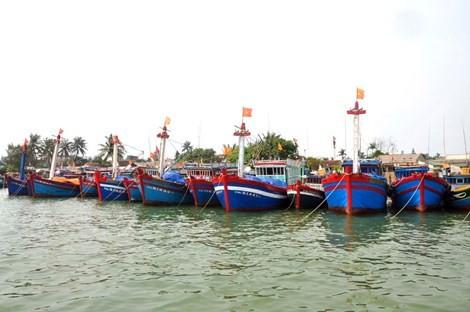 Việt Nam xác minh tàu cá bị tàu Trung Quốc đâm chìm ở Hoàng Sa - ảnh 1