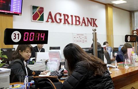 Agribank: Quyết liệt triển khai Đề án tái cơ cấu  - ảnh 1