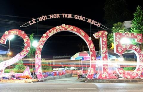 Khai mạc lễ hội hoa tam giác mạch - ảnh 1