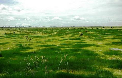 Khám phá vùng hoang dã Láng Sen - ảnh 2