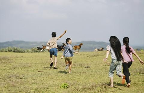 Để phim ngoại ngẩn ngơ vì cảnh Việt  - ảnh 1