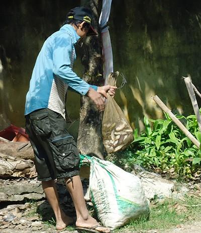 Bắt cá ở hồ nhiễm chất độc da cam rồi đem bán  - ảnh 3