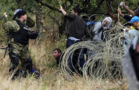 Châu Âu đã bất lực trước khủng hoảng tị nạn? - ảnh 2