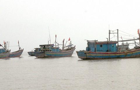 Ngăn chặn tàu Trung Quốc tràn vào biển Việt Nam - ảnh 1