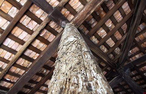 Ngôi đình cổ nhất Nam Bộ đang 'thoi thóp' - ảnh 3