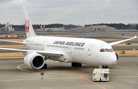 Máy bay Boeing 787 đang bay, động cơ ngưng chạy - ảnh 1