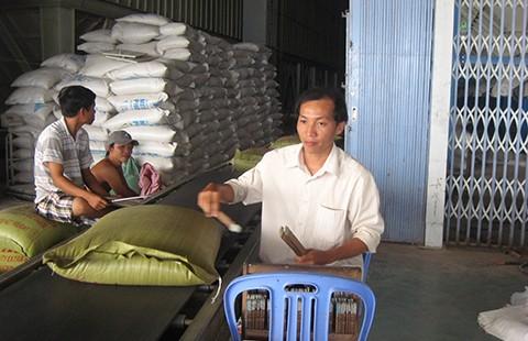 Muốn xuất khẩu gạo phải lập công ty tại… Singapore - ảnh 1