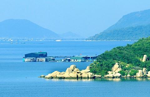 Người quyết liệt chống dự án thép chục tỉ đô ở Vịnh Vân Phong  - ảnh 2