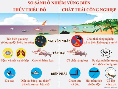 Buộc ngưng hoạt động vì thải chất độc ra biển - ảnh 3