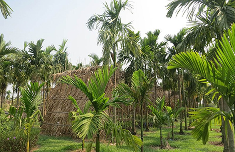 Nhớ Sài Gòn… khi ở Sài Gòn - ảnh 1