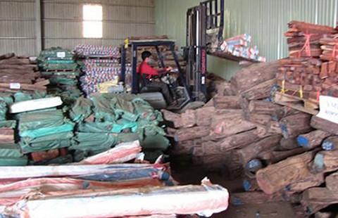 Cơ quan điều tra bán gỗ vật chứng là trái luật - ảnh 2