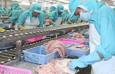 Thượng viện Mỹ đưa quyết định có lợi cho cá tra Việt  - ảnh 2