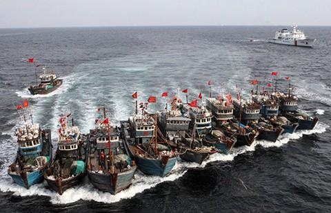 Tàu cá Trung Quốc càn quét các vùng biển khắp thế giới - ảnh 1