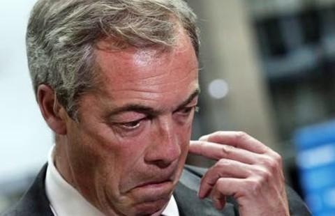 Chủ tịch đảng ủng hộ Brexit từ chức - ảnh 1