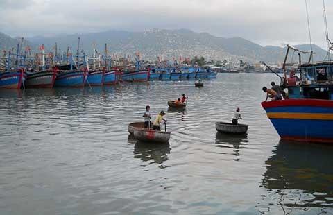 Dự án thép Hoa Sen Cà Ná và nỗi lo môi trường - ảnh 1