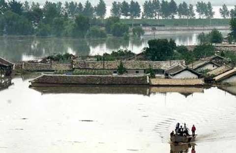 Lụt ở Triều Tiên, 133 người chết, 395 người mất tích - ảnh 1