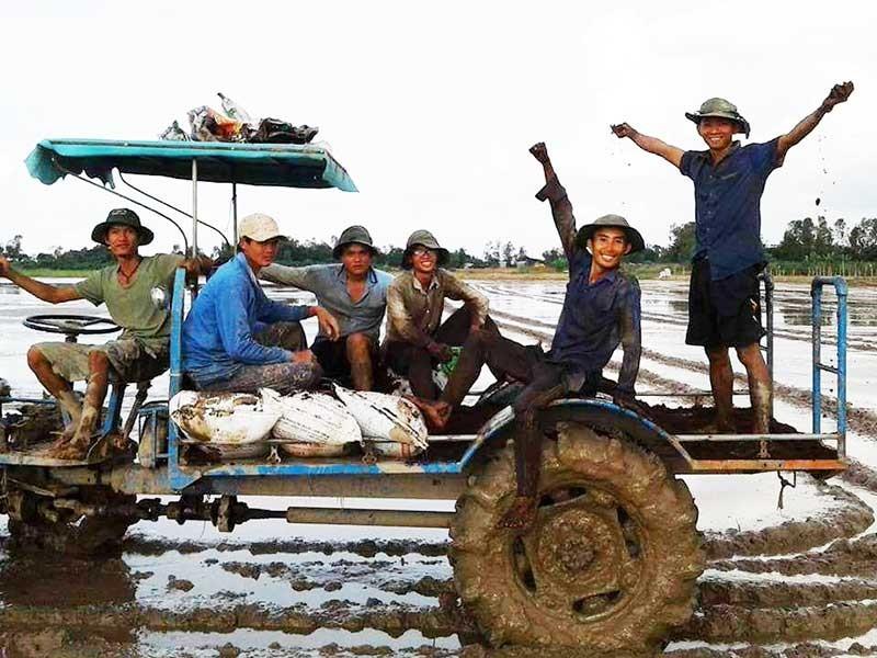 Người làm ra gạo sạch bán cháy hàng tại TP.HCM - ảnh 1