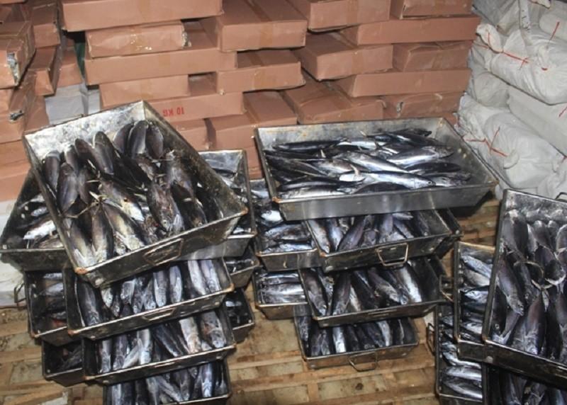 Hà Tĩnh còn 320 tấn hải sản không an toàn chưa tiêu hủy - ảnh 1