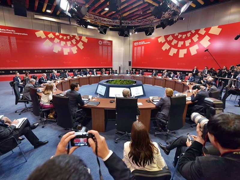 APEC với mối lo TPP - ảnh 1