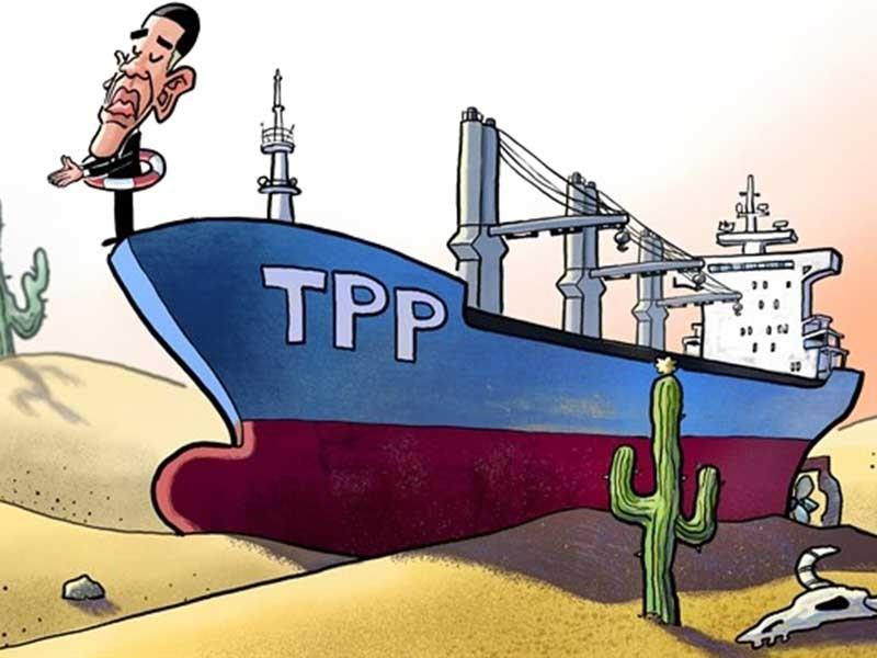 TPP không phải món quà cho Bắc Kinh - ảnh 1