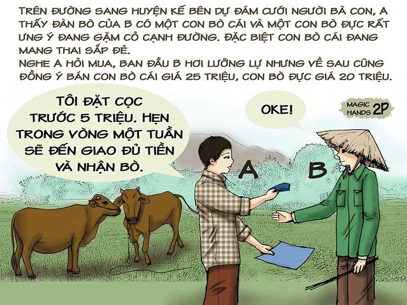 Tình huống kỳ 24: Lúng túng vì bò mẹ đẻ bò con - ảnh 1