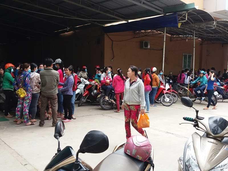 Vĩnh Long: Gần 1.500 CN Công ty NeoBags ngưng việc - ảnh 1