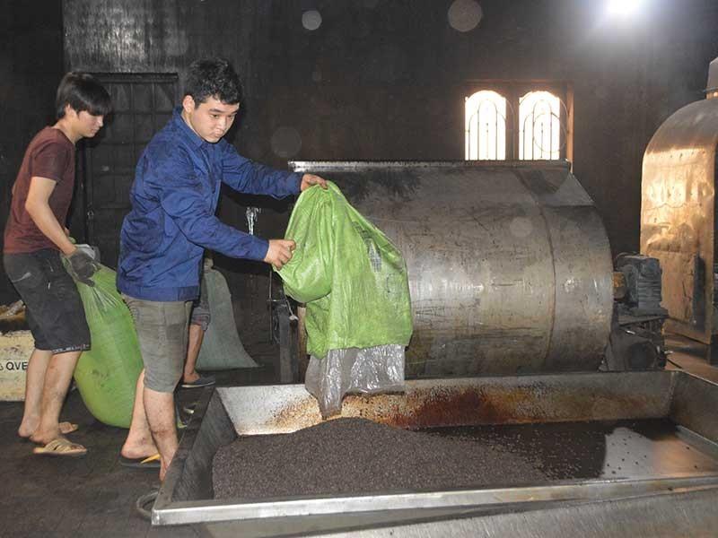 Lao đao vì tiếng oan 'sản xuất cà phê giả, bẩn' - ảnh 1
