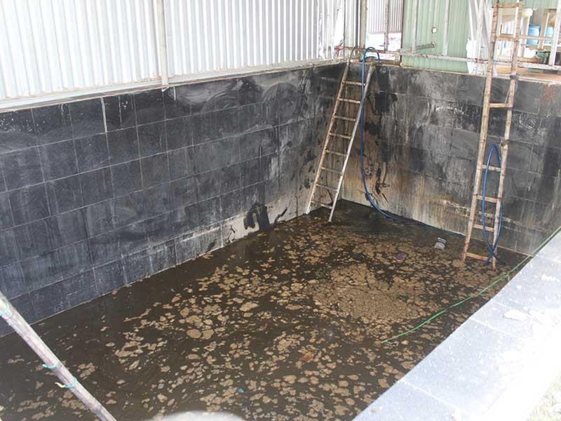 5 người chết dưới hầm nước cá nghi ngạt khí - ảnh 1