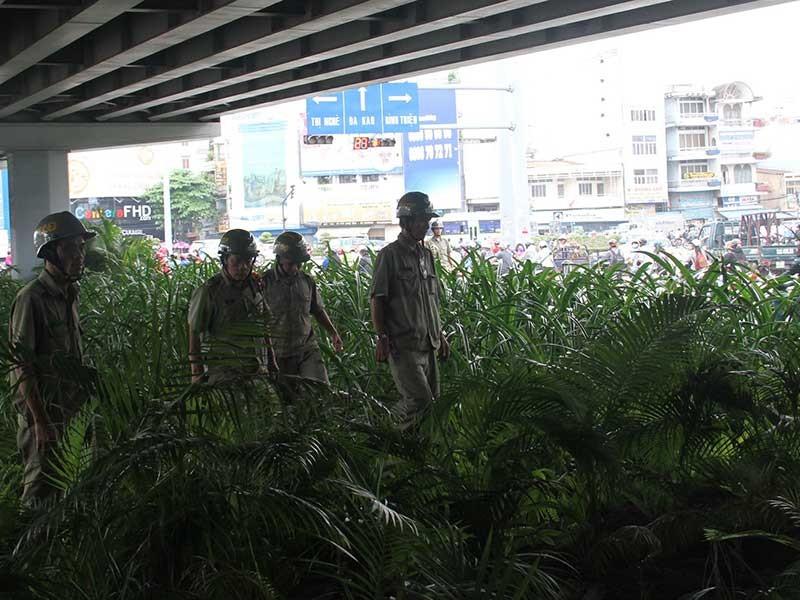 Xử lý dứt điểm nạn 'hút chích giữa Sài Gòn' - ảnh 2