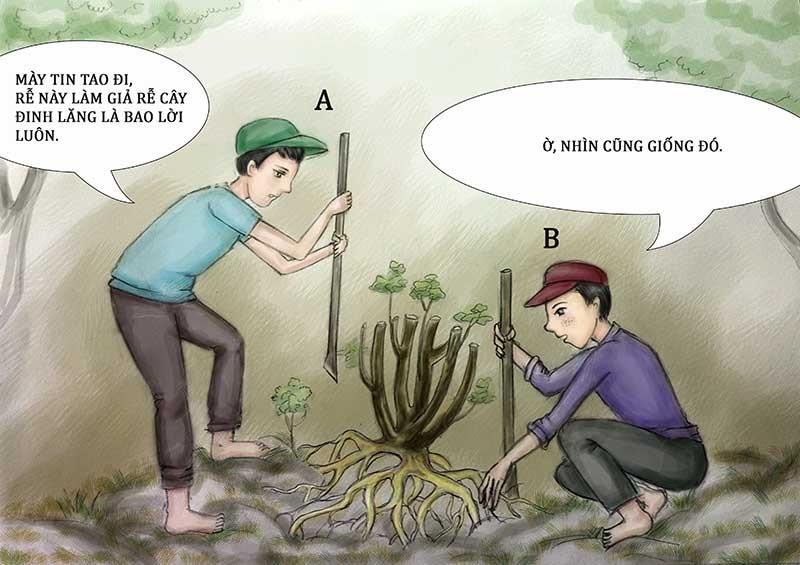 Tình huống kỳ 27: Giả rễ đinh lăng đem bán - ảnh 1