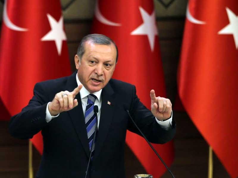 Thủ hiến Đức đòi tẩy chay Tổng thống Erdogan - ảnh 1