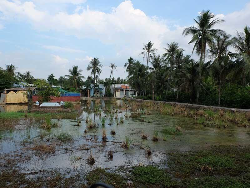 Đại gia đất Sài Gòn... vẫn nghèo - ảnh 1