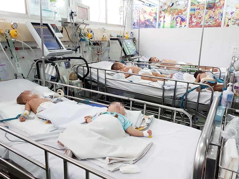 Báo động viêm não Nhật Bản tăng vọt cả nước - ảnh 1