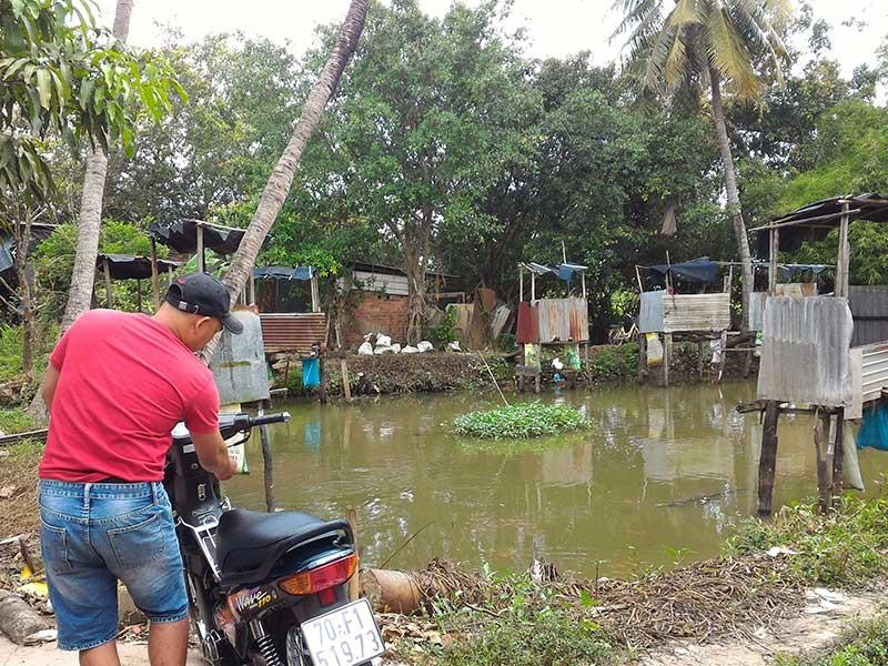 Dựng cầu tõm giữa thị trấn để nuôi cá  - ảnh 1
