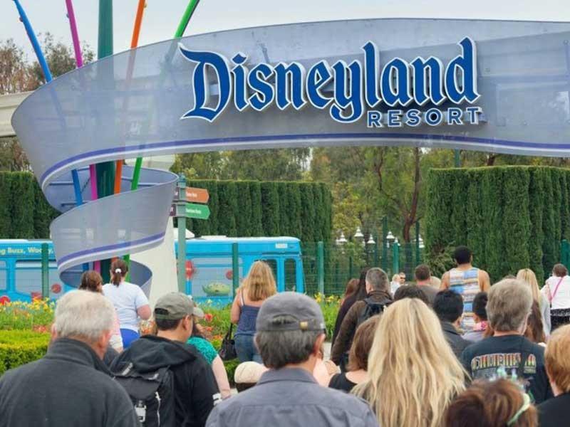 Disneyland khốn đốn vì bệnh Lê dương - ảnh 1