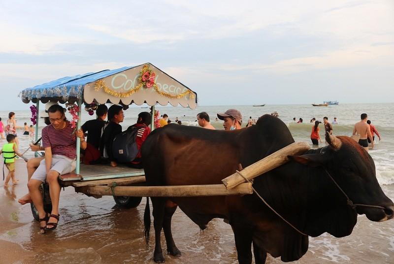 Biển Cam Bình được du khách ưa chuộng mùa Tết - ảnh 2