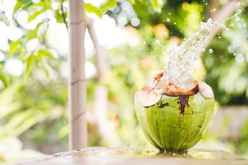 Uống nước dừa vào thời điểm nào là tốt nhất? - ảnh 2