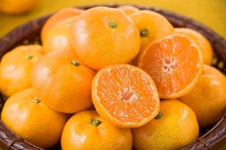 10 thực phẩm cực tốt cho sức khỏe trong mùa lạnh - ảnh 4