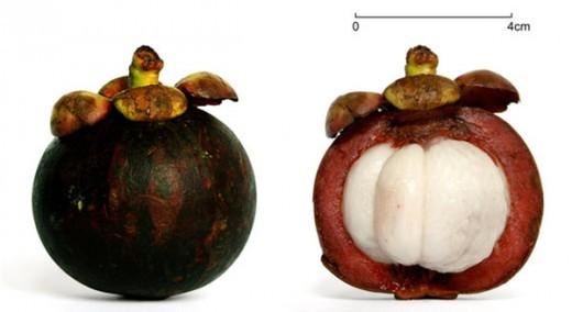 10 loại trái cây chống lão hóa hàng đầu - ảnh 5