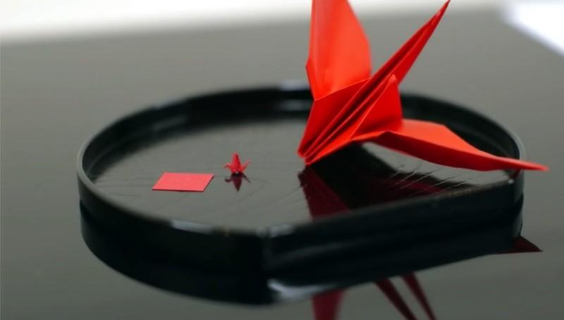Kiểm tra tay nghề sinh viên y khoa bằng cuộc thi xếp giấy origami - ảnh 6