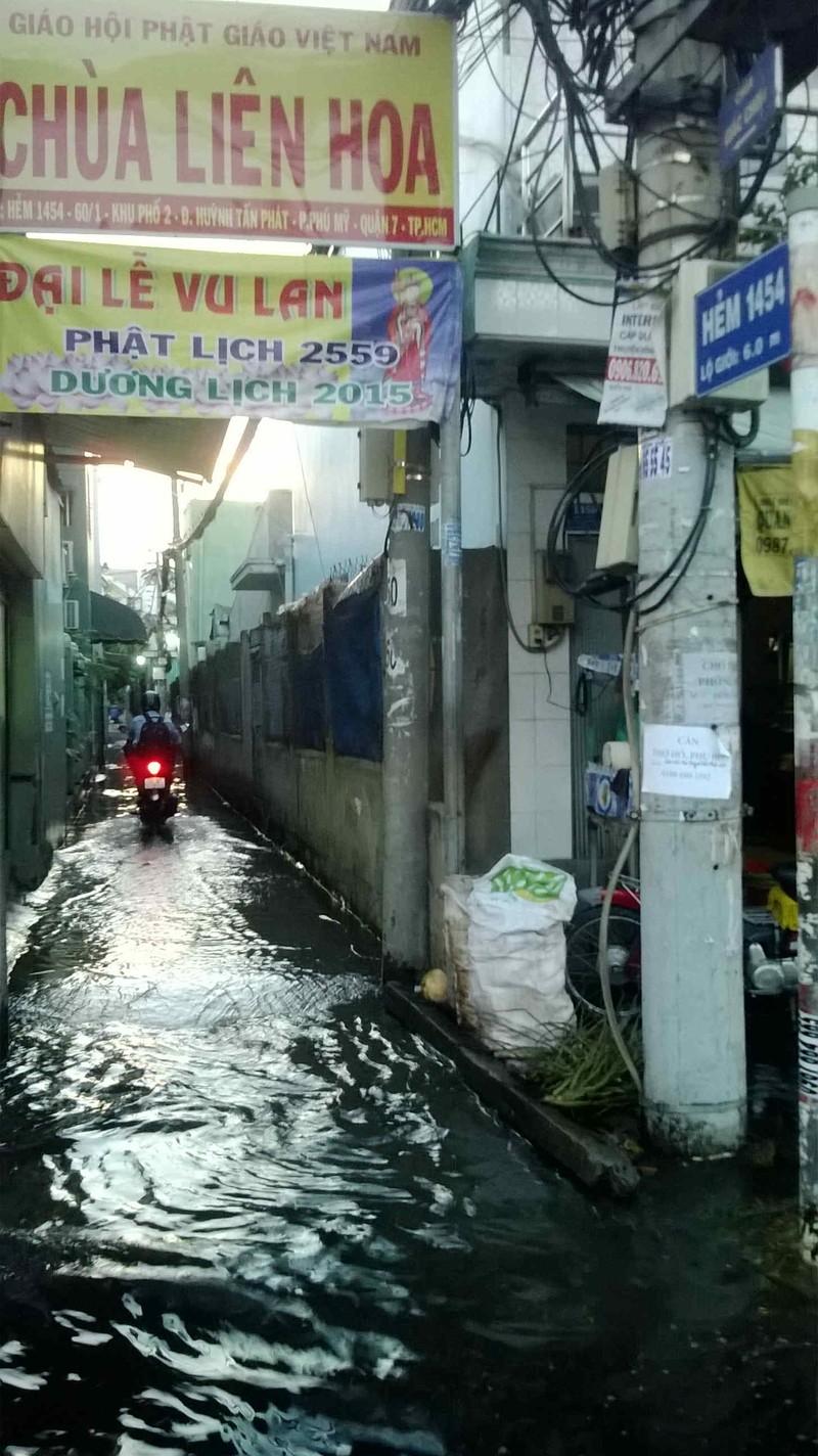 Triều cường, người Sài Gòn bì bõm lội nước về nhà - ảnh 8