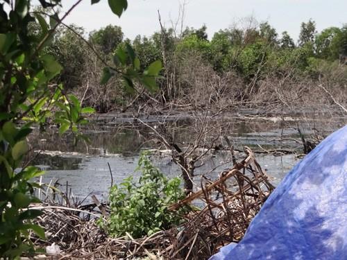 'Đột kích' khu sơ chế chất thải chui lớn nhất Sài Gòn - ảnh 6