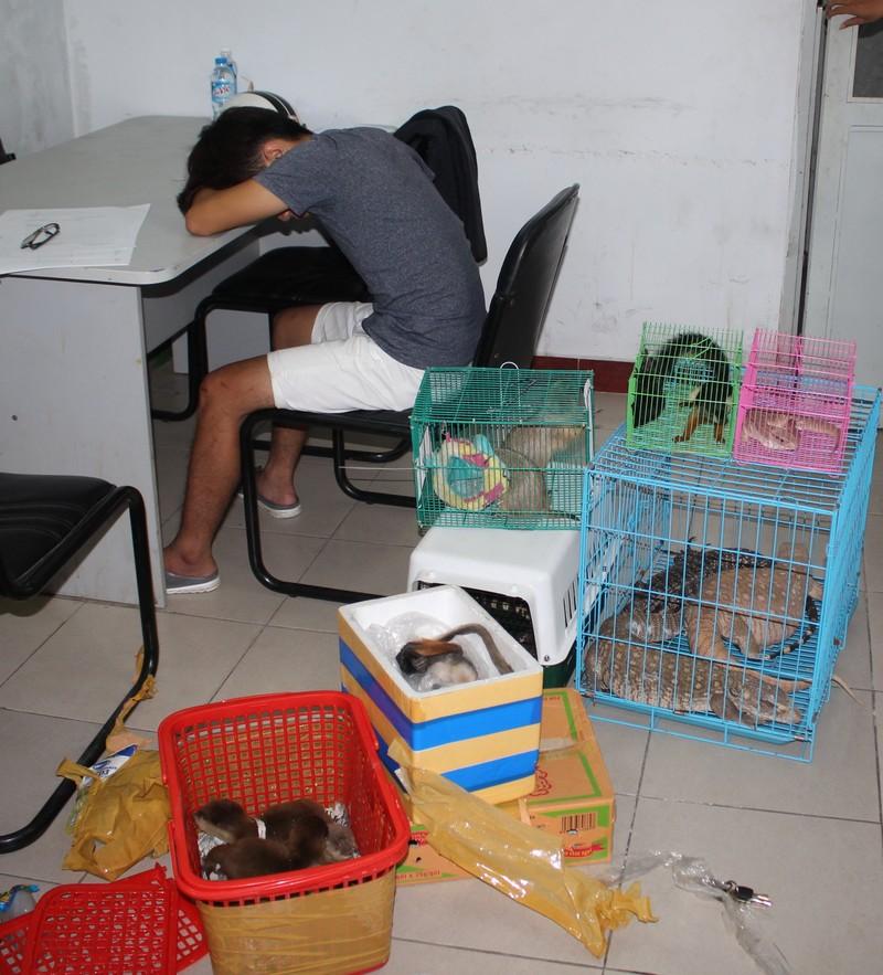 Chủ 'Vương quốc thú cưng' ở Sài Gòn bị bắt quả tang - ảnh 1