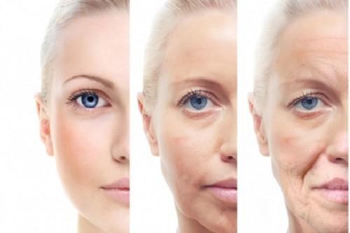 Điều gì xảy ra với cơ thể khi bạn già đi? - ảnh 1