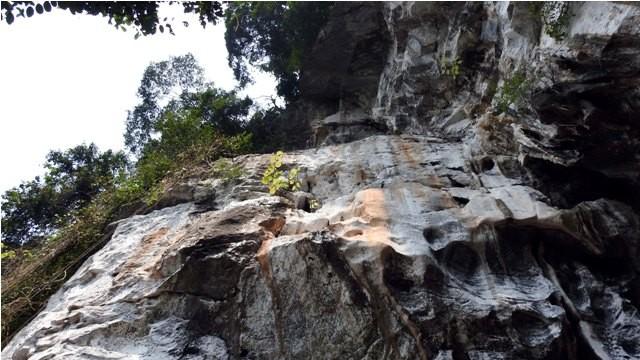 Đoàn làm phim 'King Kong' vất vả dưới mưa rừng nhiệt đới - ảnh 2